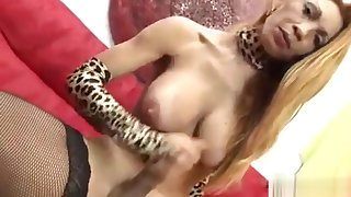 Awesome Lingeried Shemale In Solo